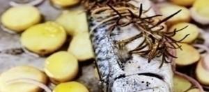 Baked Mackerel with Rosemary and Potatoes